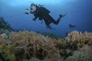 corfu-hotel-Diving.